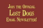 Lost Dogs Newsletter